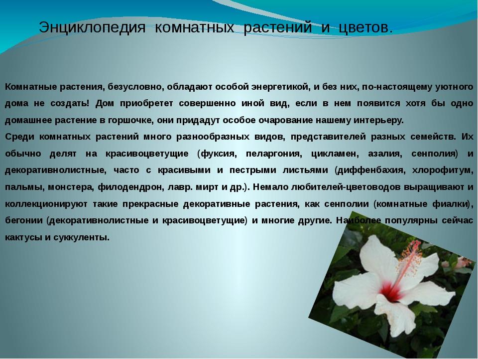 Энциклопедия комнатных растений и цветов. Комнатные растения, безусловно, обл...