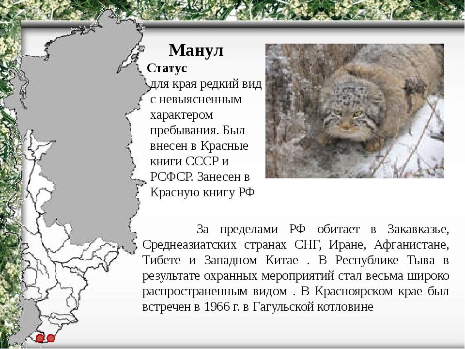 огнедышащего картинки животных красной книги красноярского края просто теме