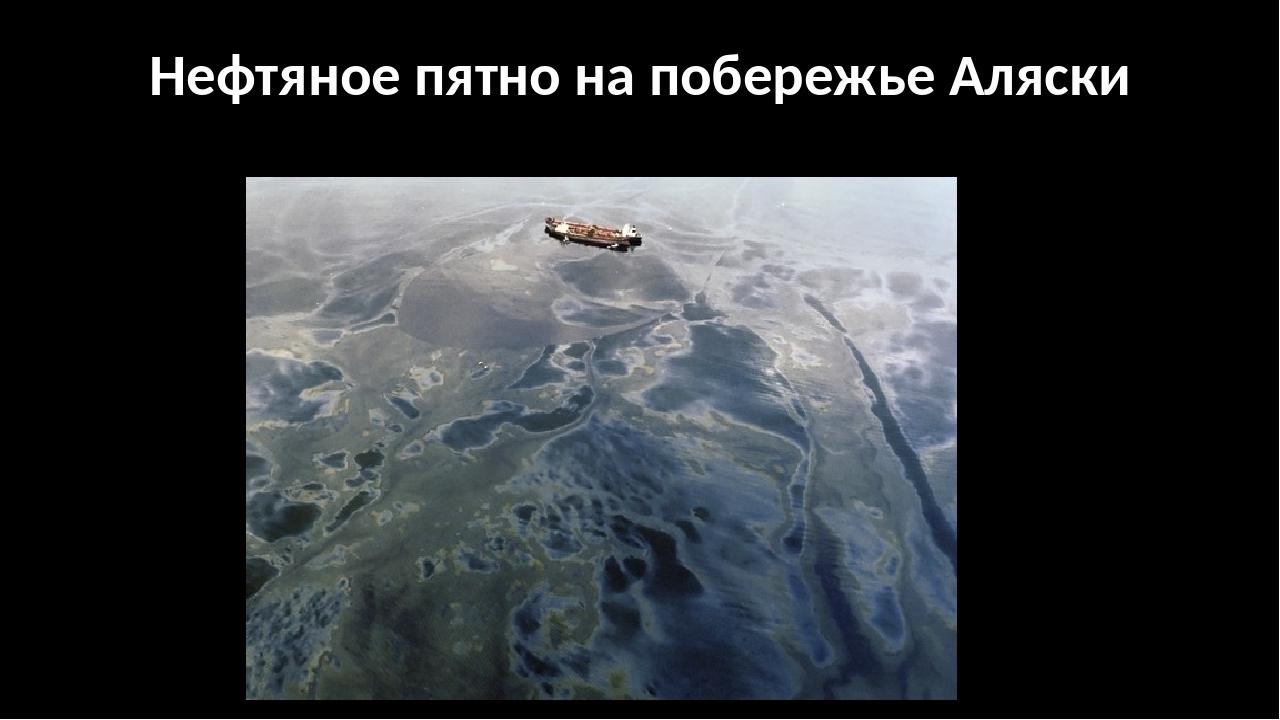Нефтяное пятно на побережье Аляски