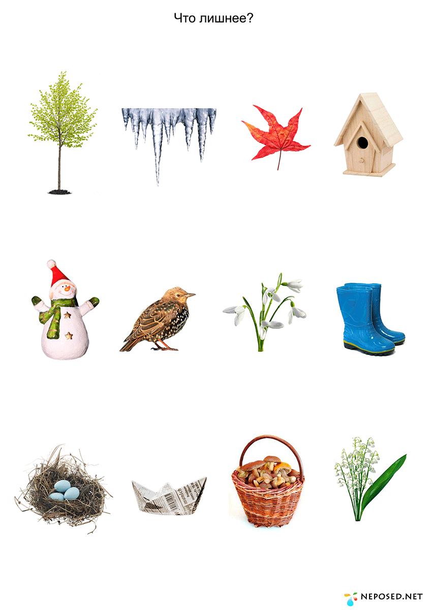 тесьму дидактические игры на тему весна в картинках зависимости разновидности