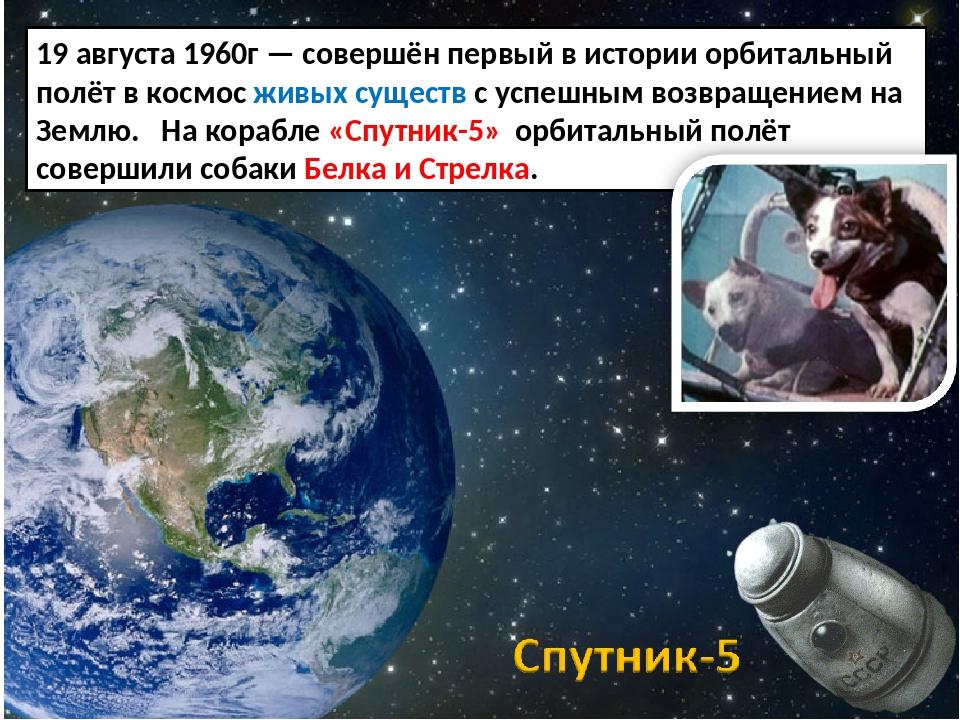 19 августа 1960г — совершён первый в истории орбитальный полёт в космос живых...
