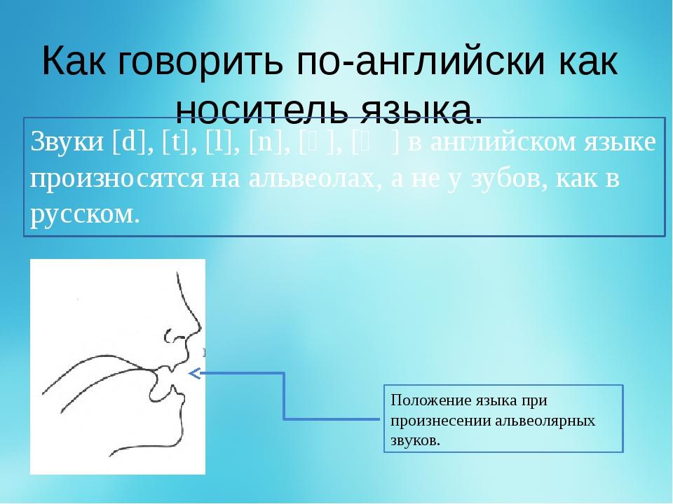 Как говорить по-английски как носитель языка. Звуки [d], [t], [l], [n], [ʧ],...