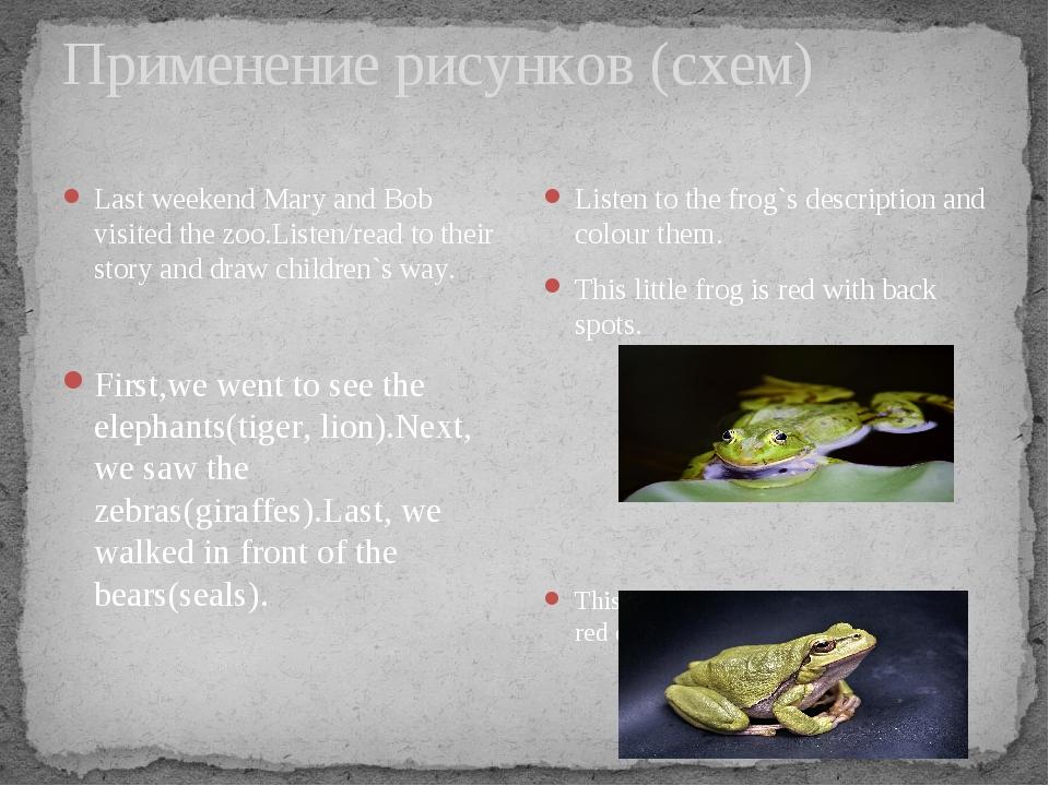 Применение рисунков (схем) Listen to the frog`s description and colour them....