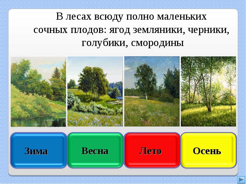 В лесах всюду полно маленьких сочных плодов: ягод земляники, черники, голубик...