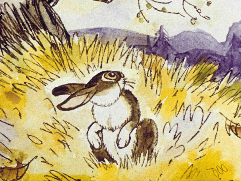 Заяц длинные уши короткий хвост сказка картинки