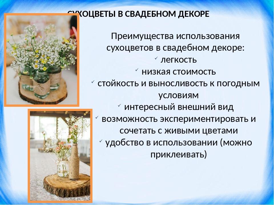 СУХОЦВЕТЫ В СВАДЕБНОМ ДЕКОРЕ Преимущества использования сухоцветов в свадебно...