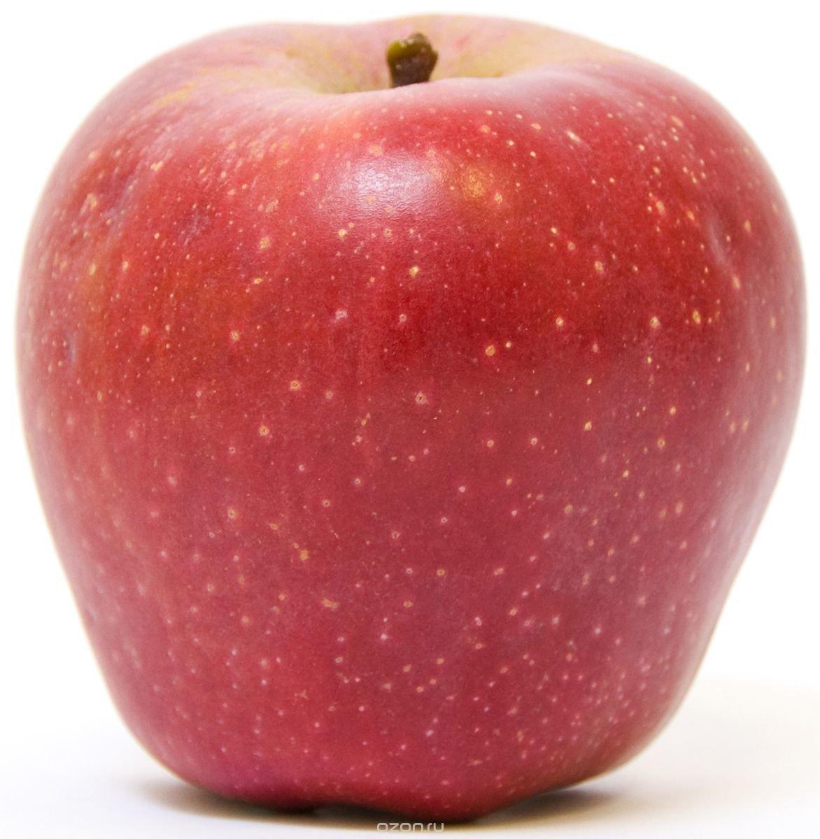 Умелые ручки, яблоки картинки красивые для детей
