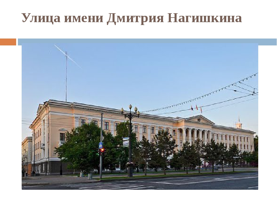 Улица имени Дмитрия Нагишкина