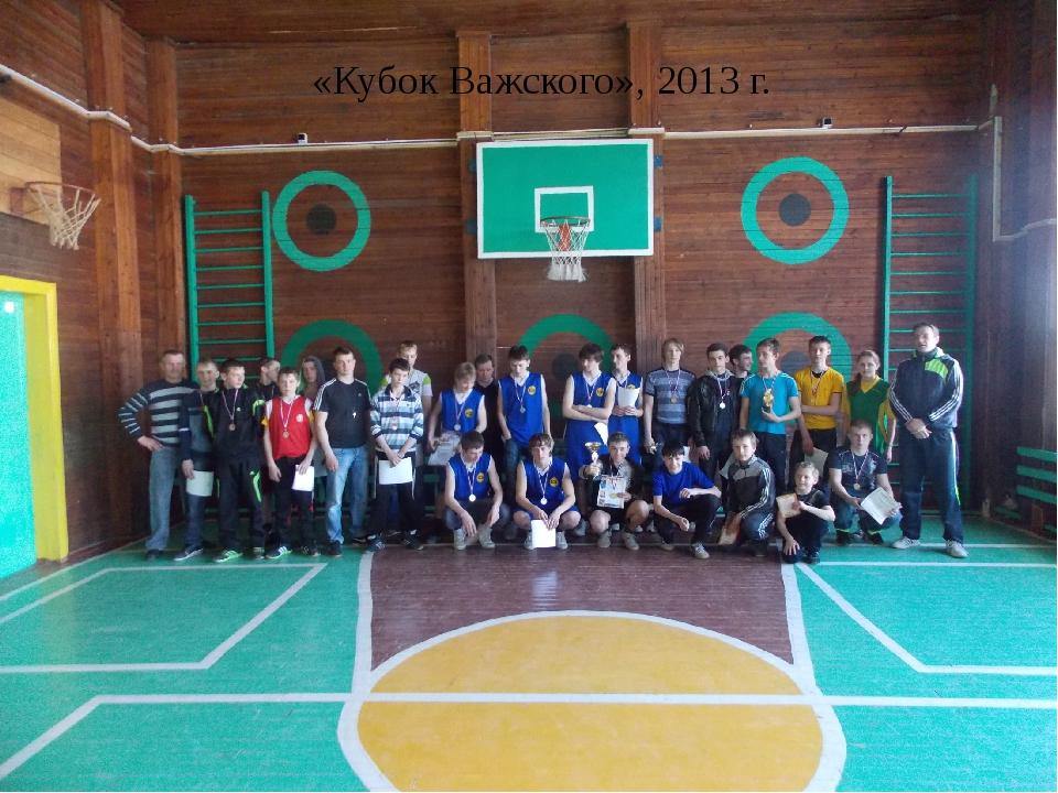 «Кубок Важского», 2013 г.