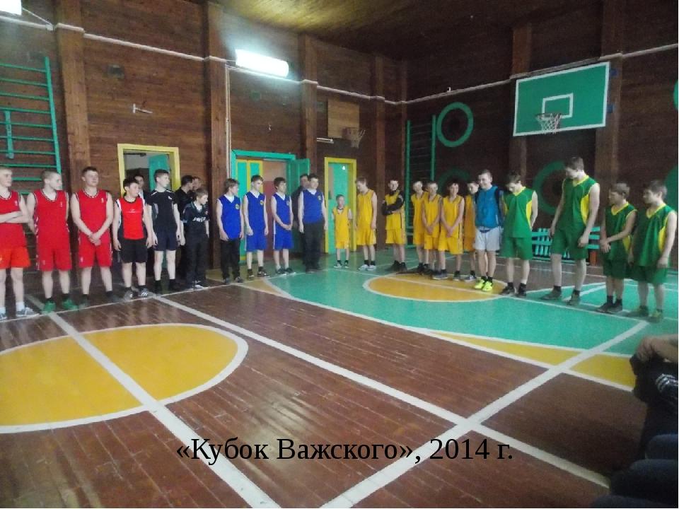 «Кубок Важского», 2014 г.