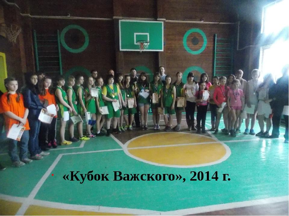 «Кубов Важского», 2014 г. «Кубок Важского», 2014 г.