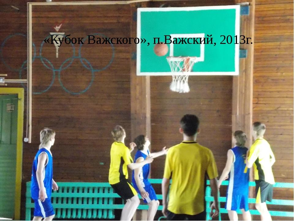 «Кубок Важского», п.Важский, 2013г.