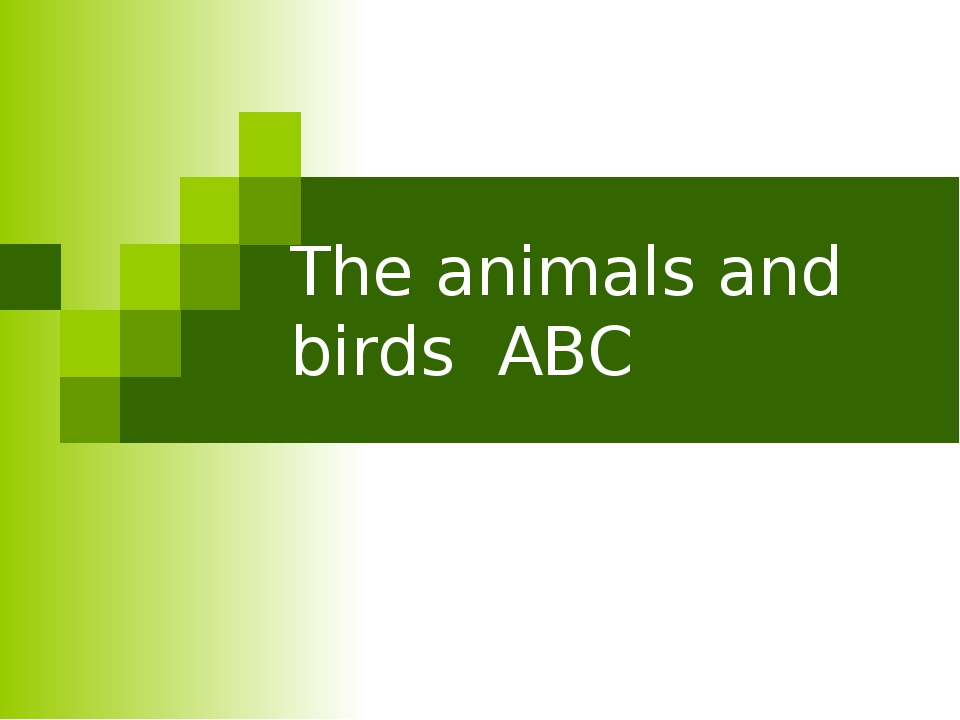 The animals and birds ABC