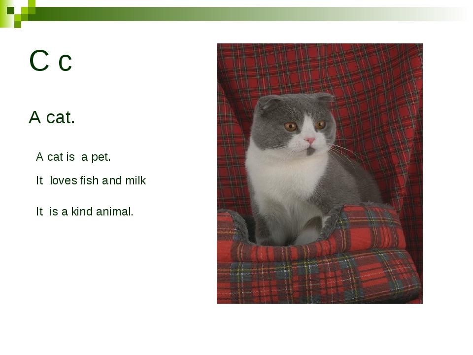 C c A cat. A cat is a pet. It loves fish and milk It is a kind animal.