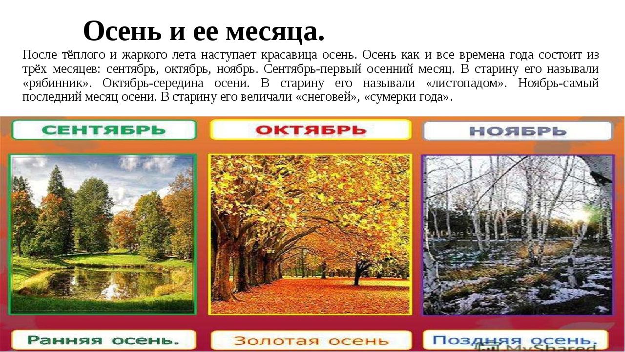 Осень и ее месяца. После тёплого и жаркого лета наступает красавица осень. Ос...