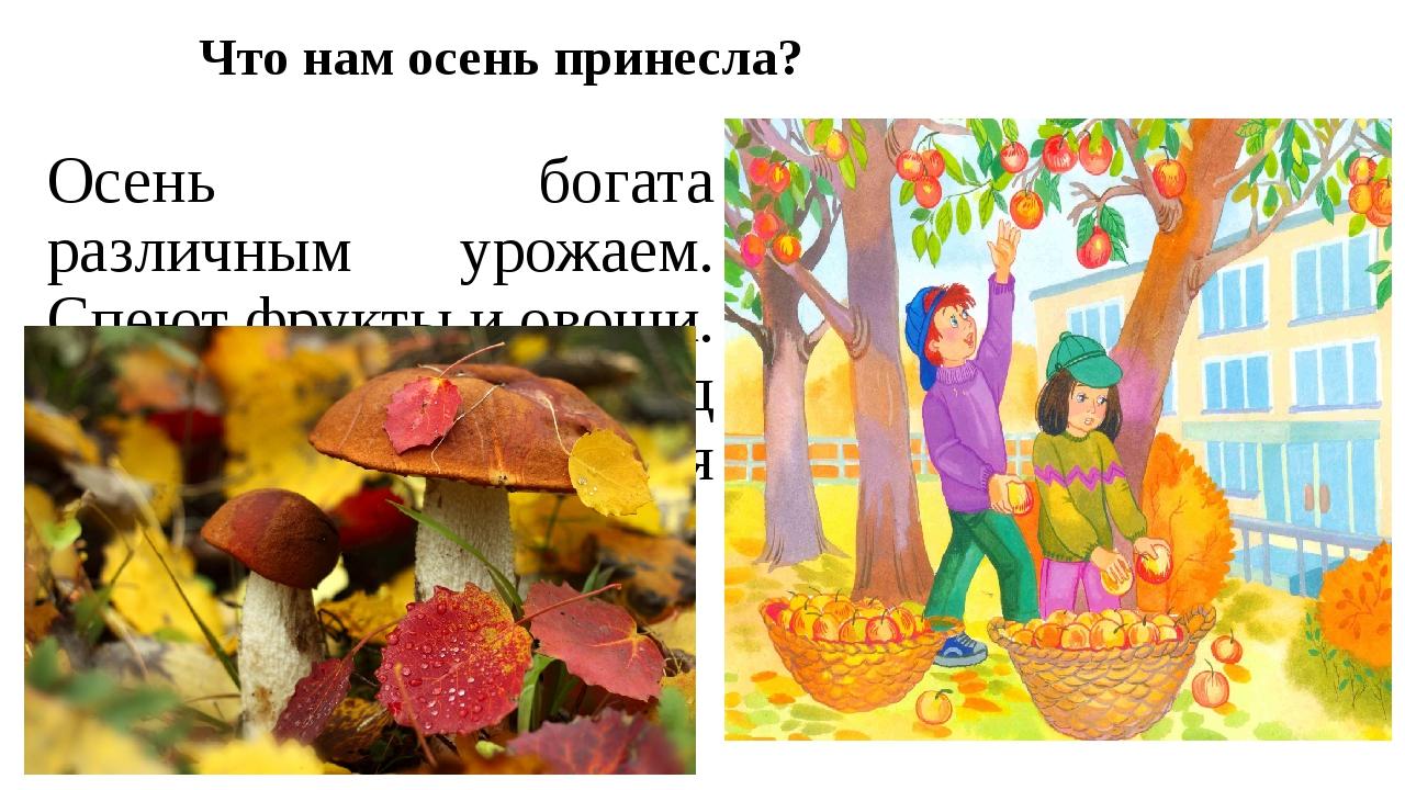 Что нам осень принесла? Осень богата различным урожаем. Спеют фрукты и овощи....
