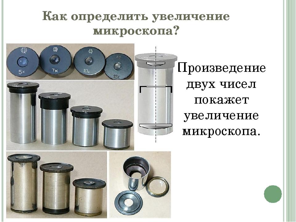 Как определить увеличение микроскопа? Произведение двух чисел покажет увеличе...