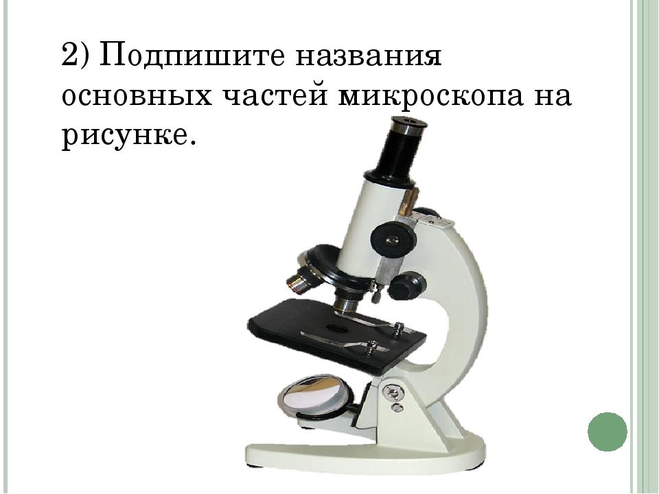 2) Подпишите названия основных частей микроскопа на рисунке.