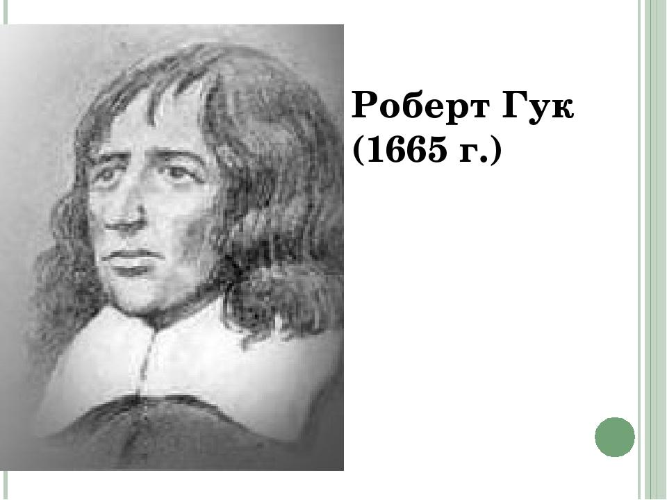 Роберт Гук (1665 г.)