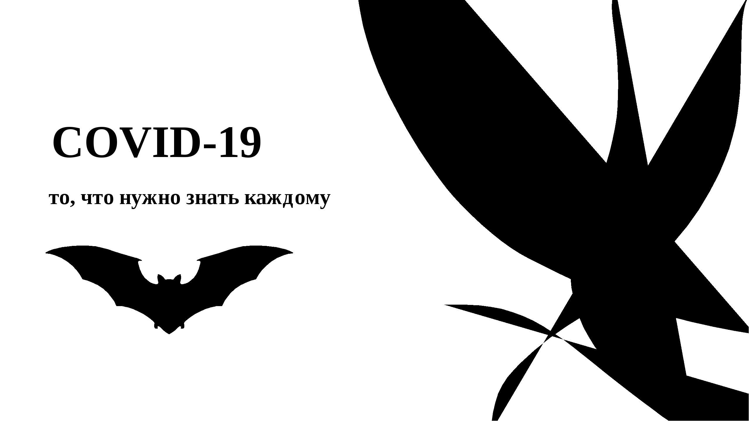 COVID-19 то, что нужно знать каждому