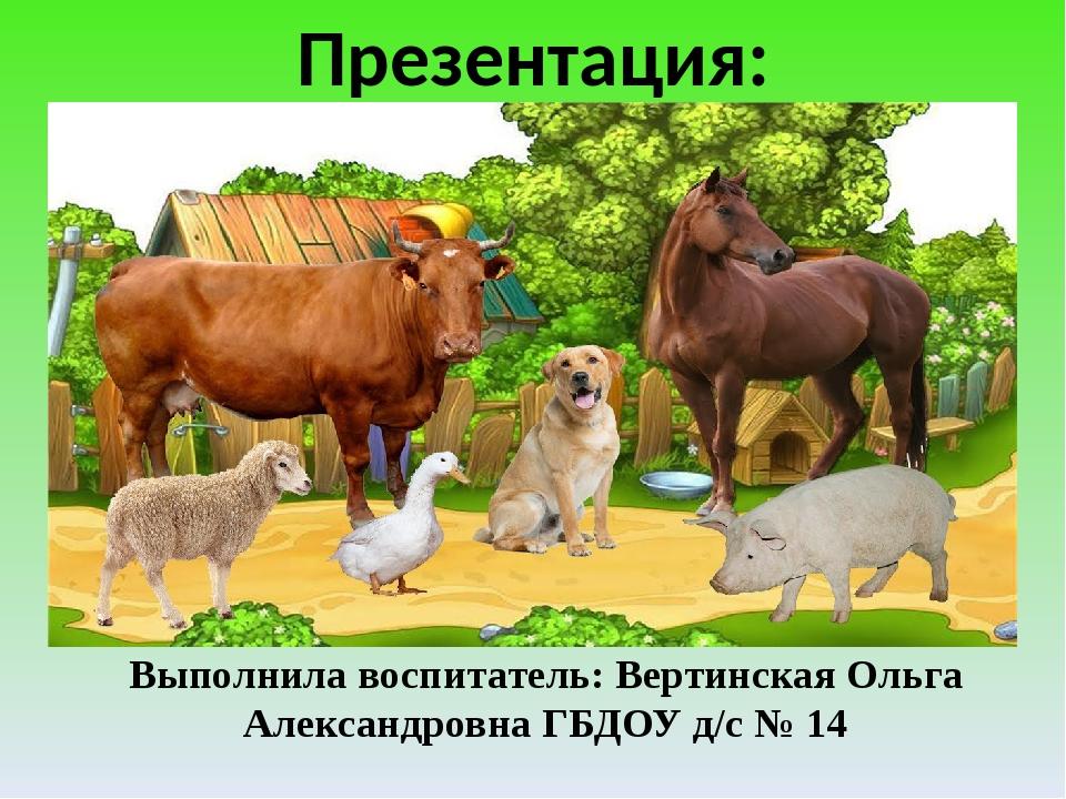 Презентация: «Домашние животные» Выполнила воспитатель: Вертинская Ольга Але...