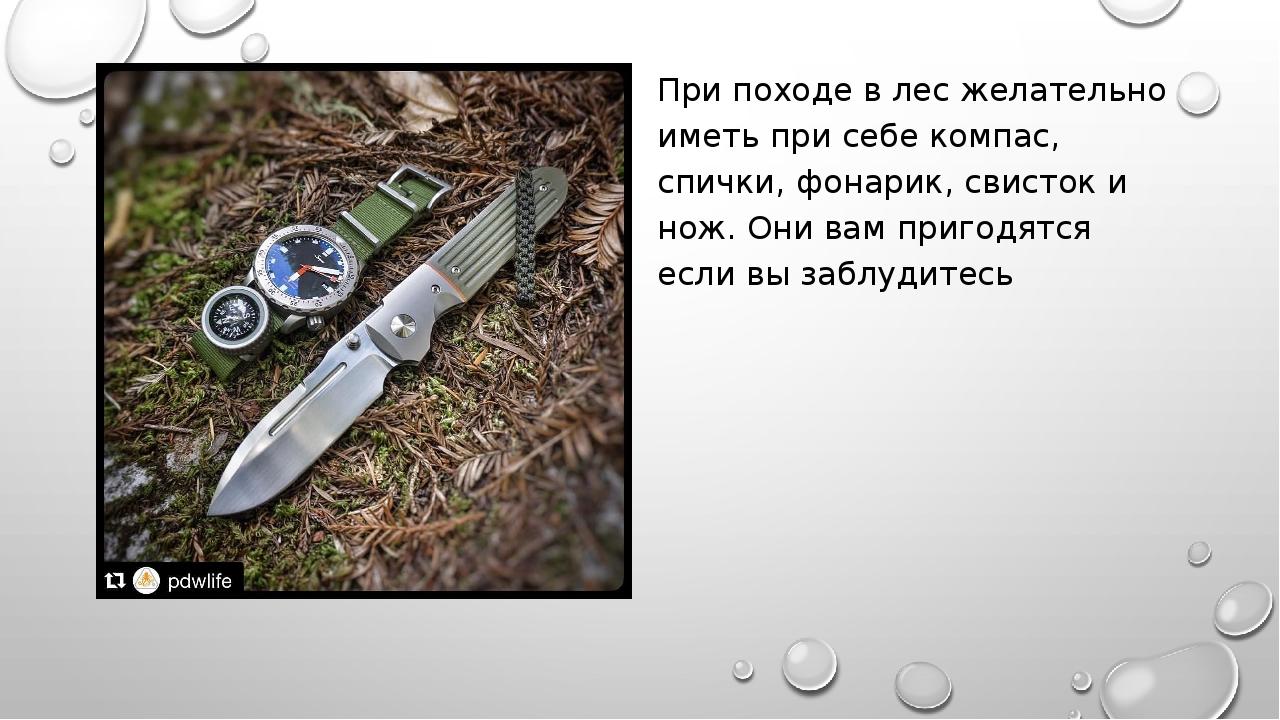 При походе в лес желательно иметь при себе компас, спички, фонарик, свисток и...