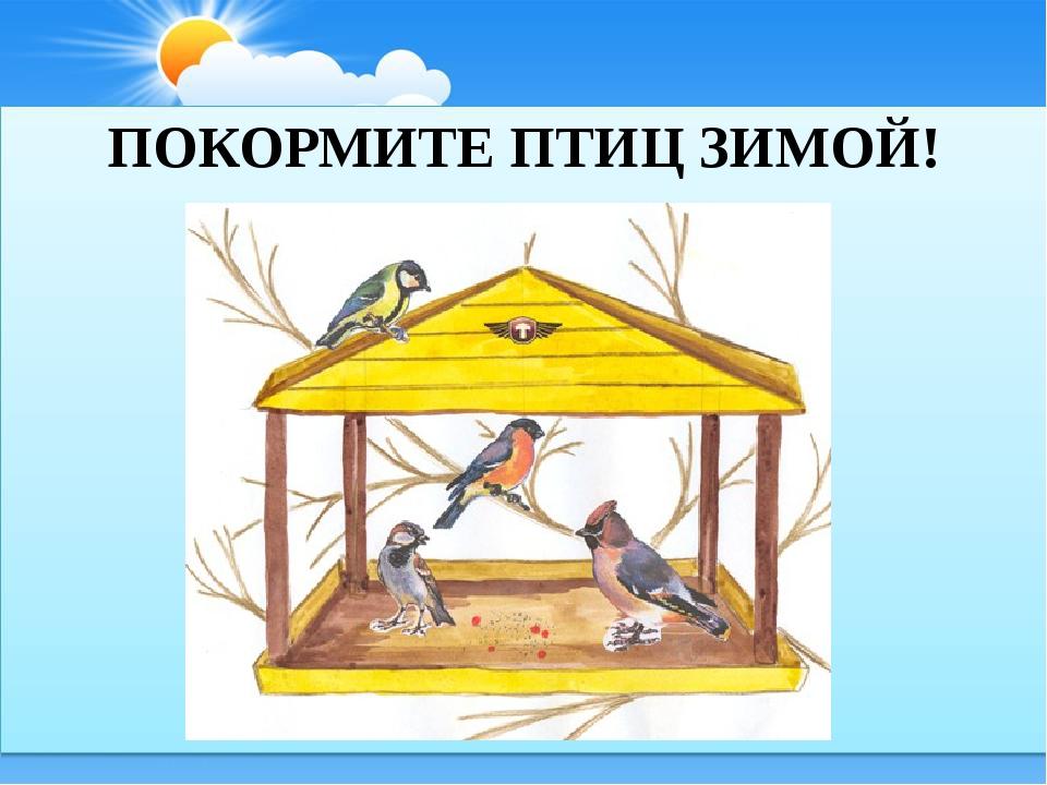 Покормите птиц зимой картинки, конституции российской