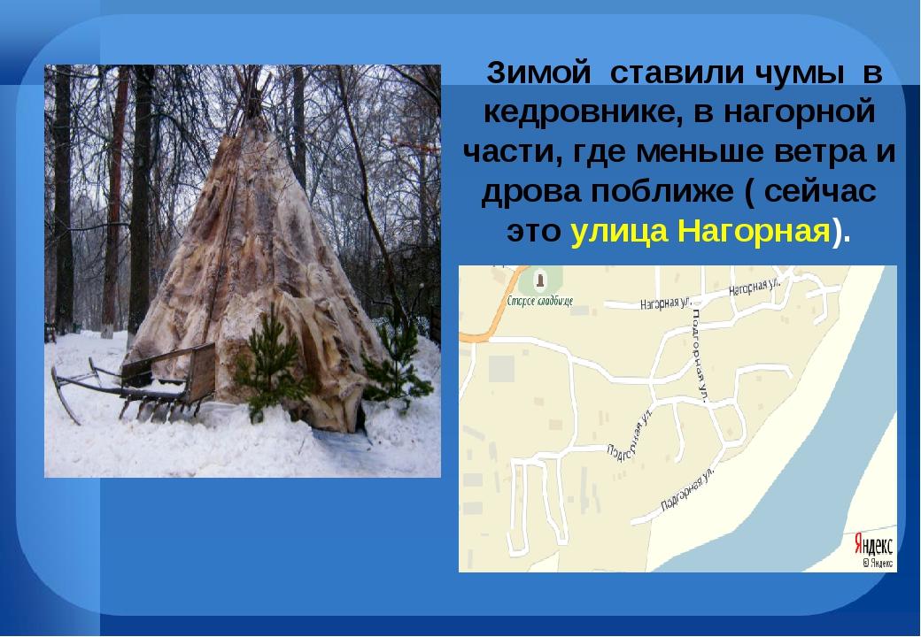 Зимой ставили чумы в кедровнике, в нагорной части, где меньше ветра и дрова...