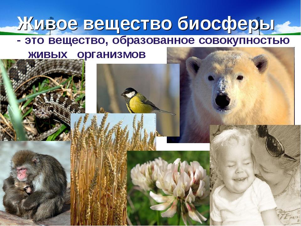 Картинки биосфера живое вещество