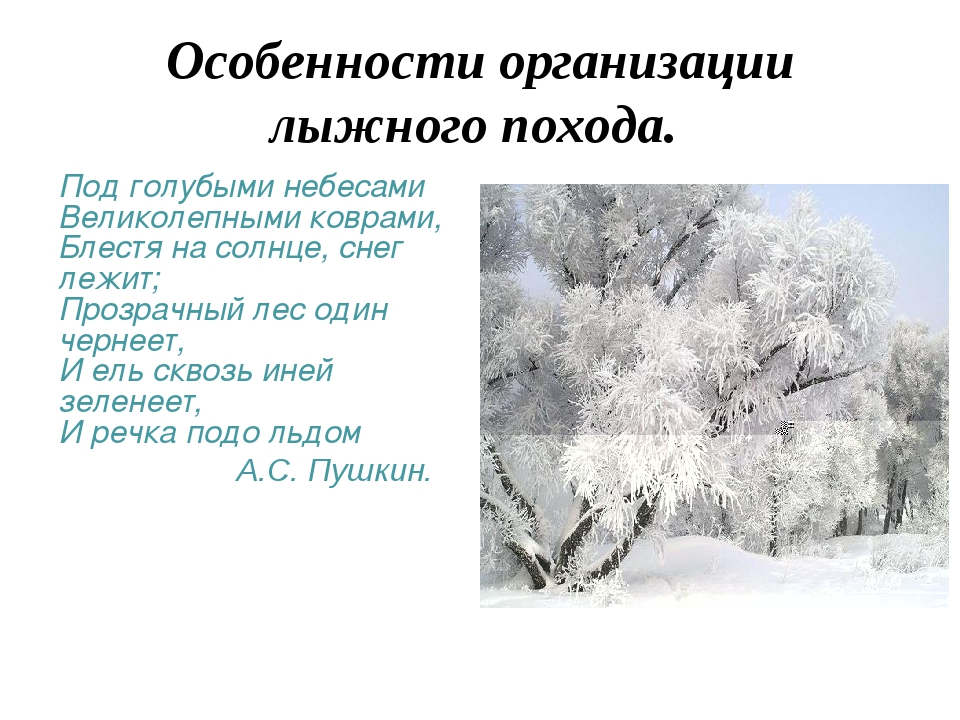 Особенности организации лыжного похода. Под голубыми небесами Великолепными к...