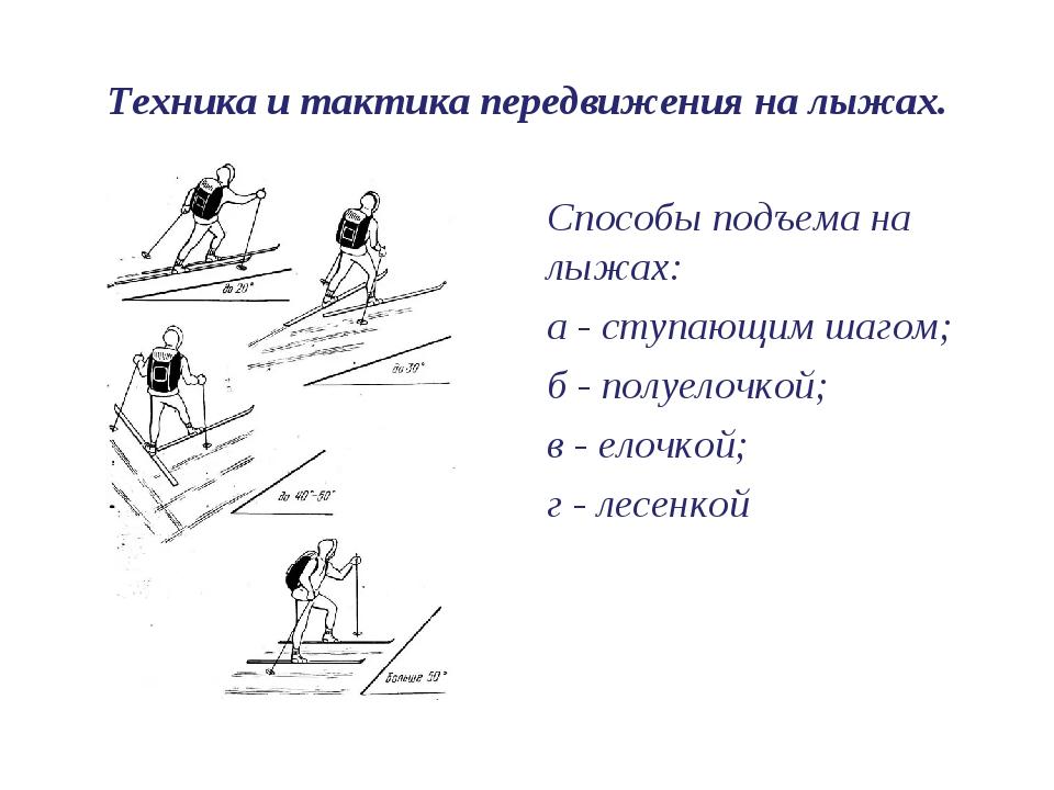 Техника и тактика передвижения на лыжах. Способы подъема на лыжах: а - ступаю...