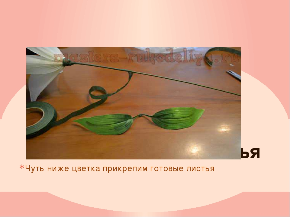 листья Чуть ниже цветка прикрепим готовые листья