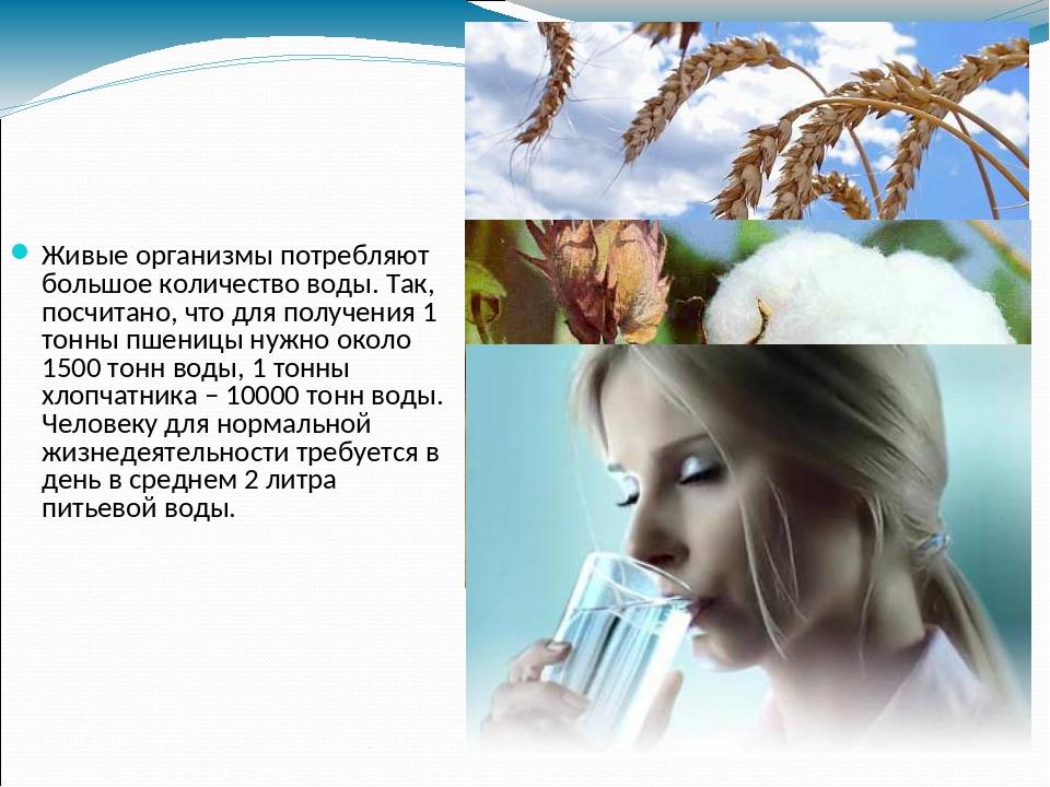 Живые организмы потребляют большое количество воды. Так, посчитано, что для п...