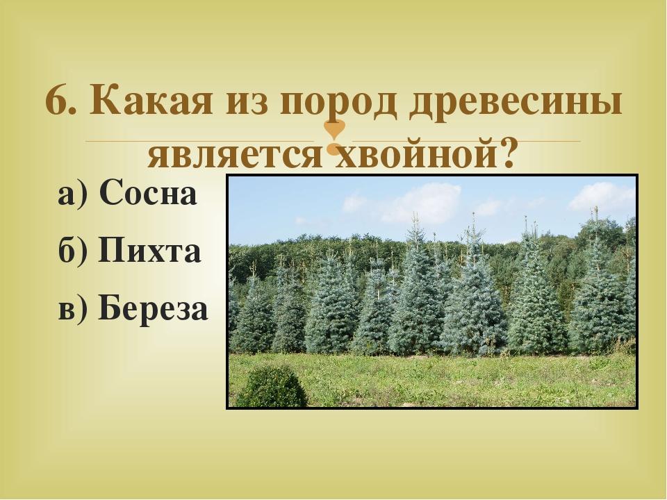 а) Сосна б)Пихта в)Береза 6. Какая из пород древесины является хвойной? 