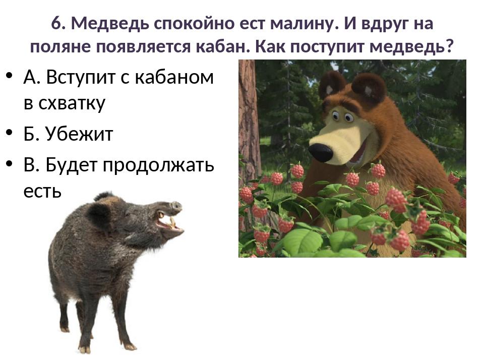 6. Медведь спокойно ест малину. И вдруг на поляне появляется кабан. Как посту...