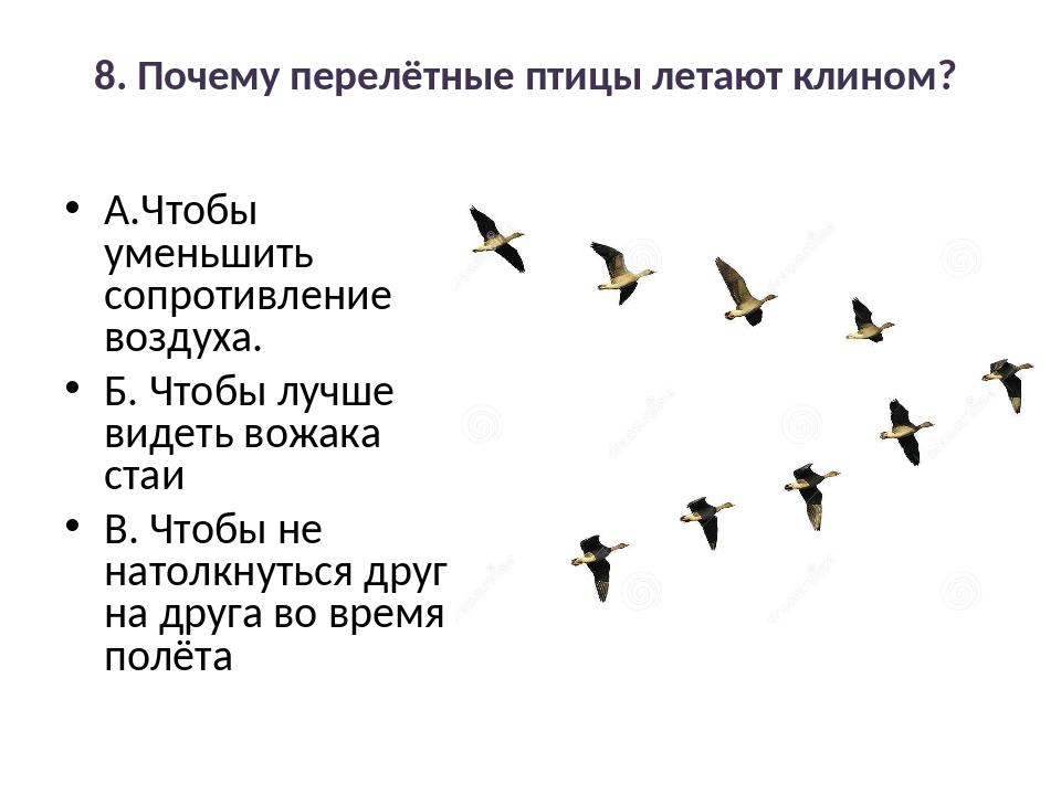 8. Почему перелётные птицы летают клином? А.Чтобы уменьшить сопротивление воз...