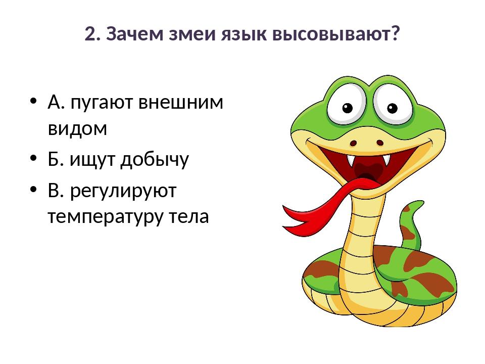 2. Зачем змеи язык высовывают? А. пугают внешним видом Б. ищут добычу В. регу...