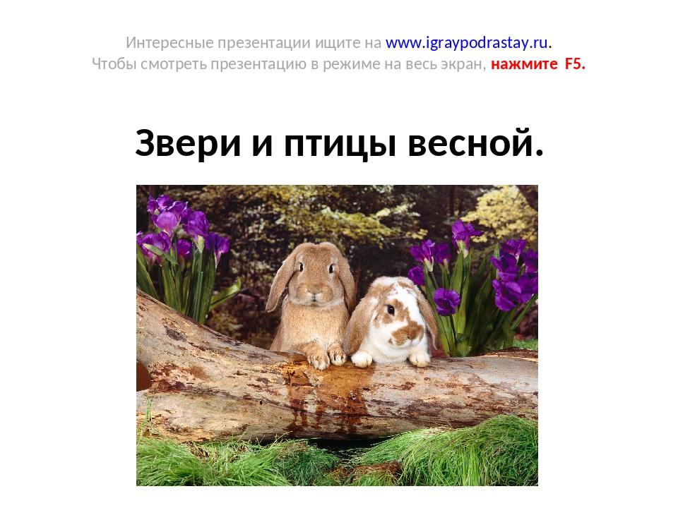 Интересные презентации ищите на www.igraypodrastay.ru. Чтобы смотреть презент...