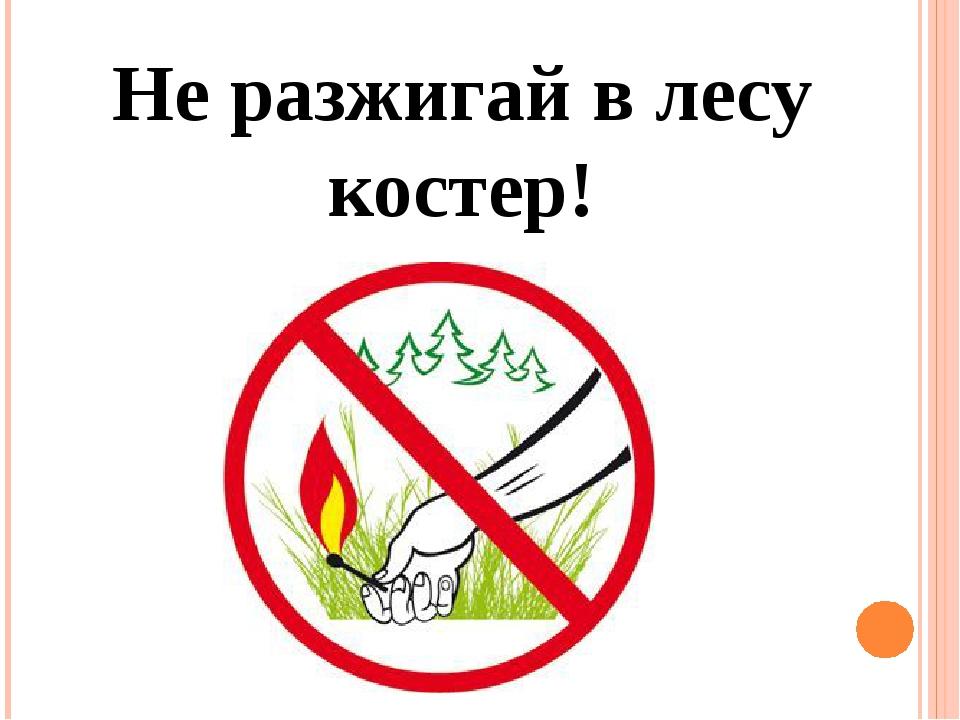 фото не разводите костры в лесу знак города, страны все