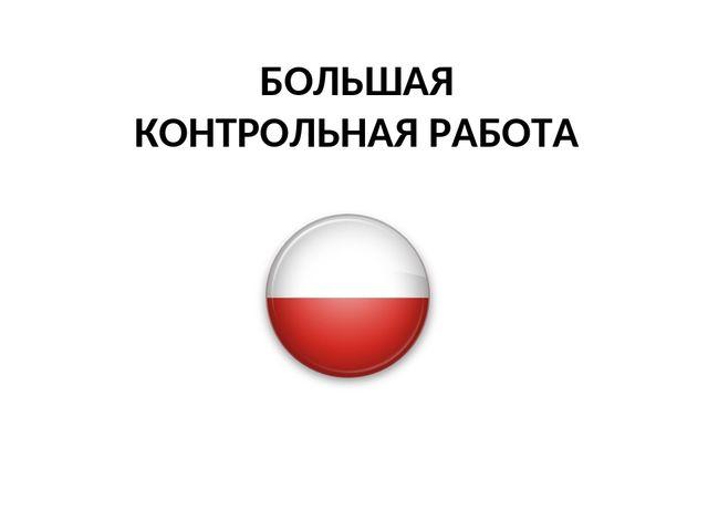 Контрольная работа по польскому языку 2551