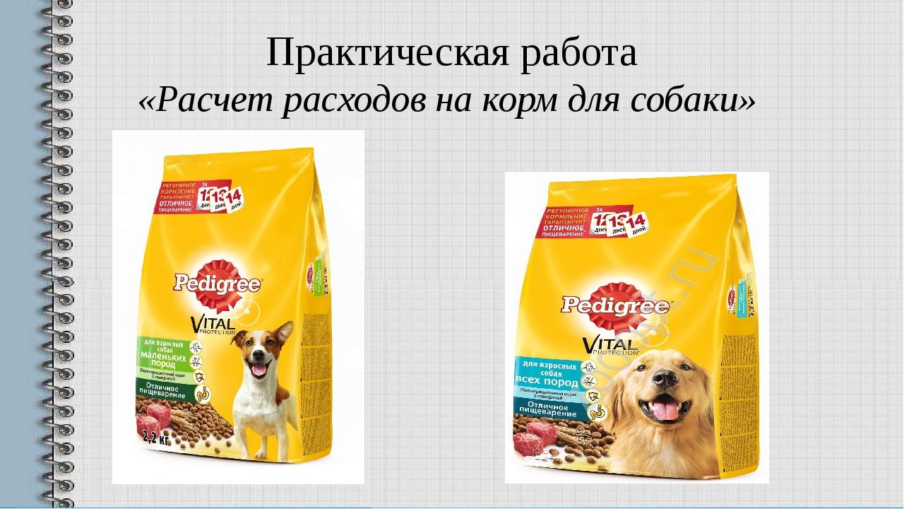 Практическая работа «Расчет расходов на корм для собаки»