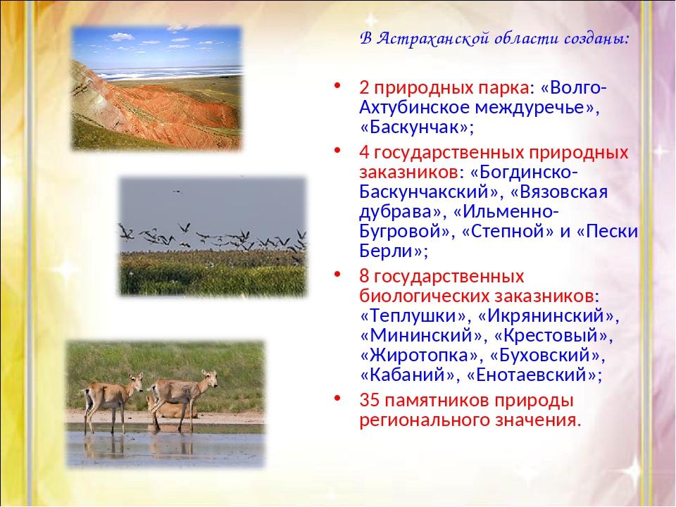 В Астраханской области созданы: 2 природных парка: «Волго-Ахтубинское междур...
