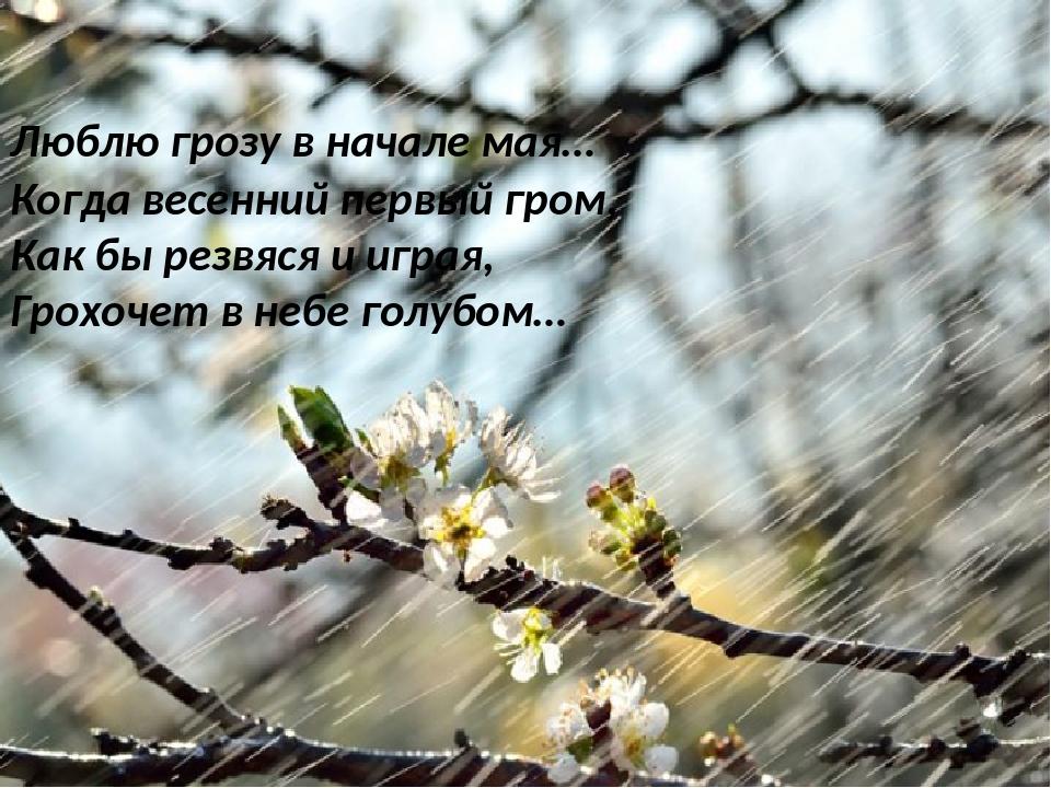 стихотворение весной весной в начале мая занятия речевому развитию
