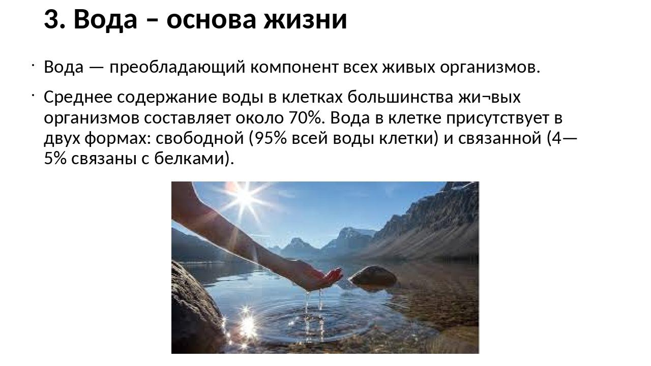 3. Вода – основа жизни Вода — преобладающий компонент всех живых организмов....