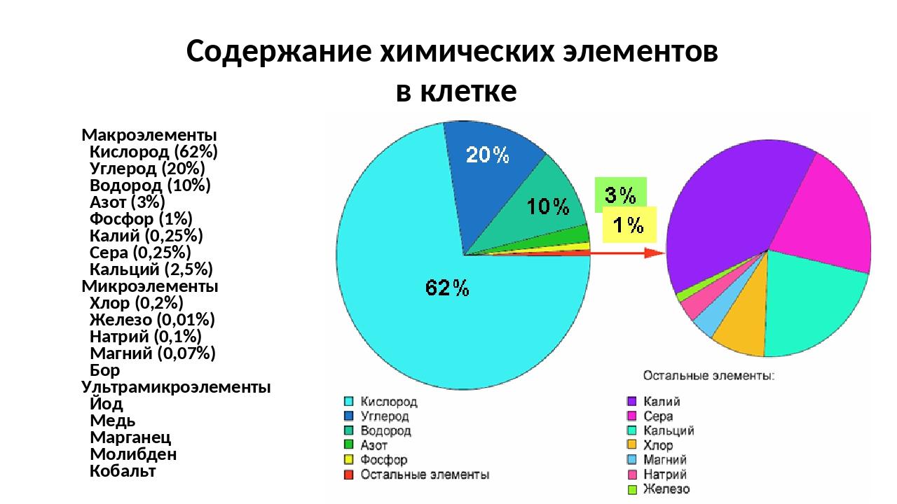 Макроэлементы Кислород (62%) Углерод (20%) Водород (10%) Азот (3%) Фосфор (1%...