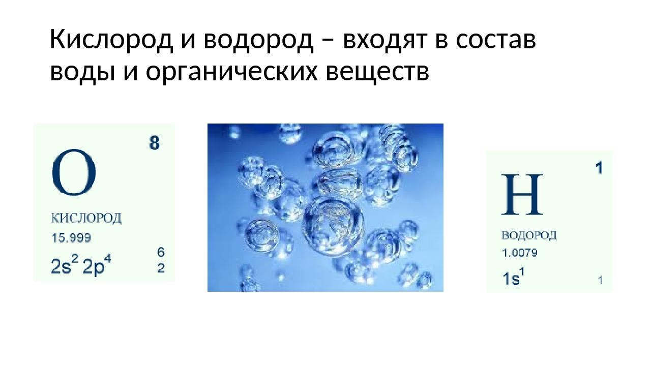 Кислород и водород – входят в состав воды и органических веществ