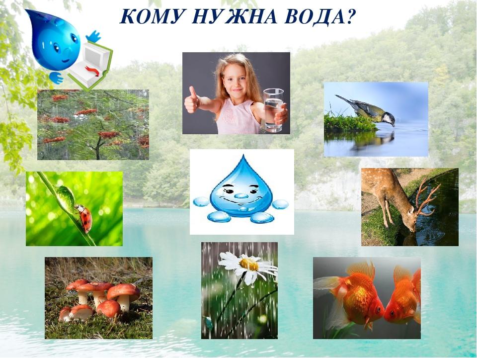 Картинки о воде в природе для детей
