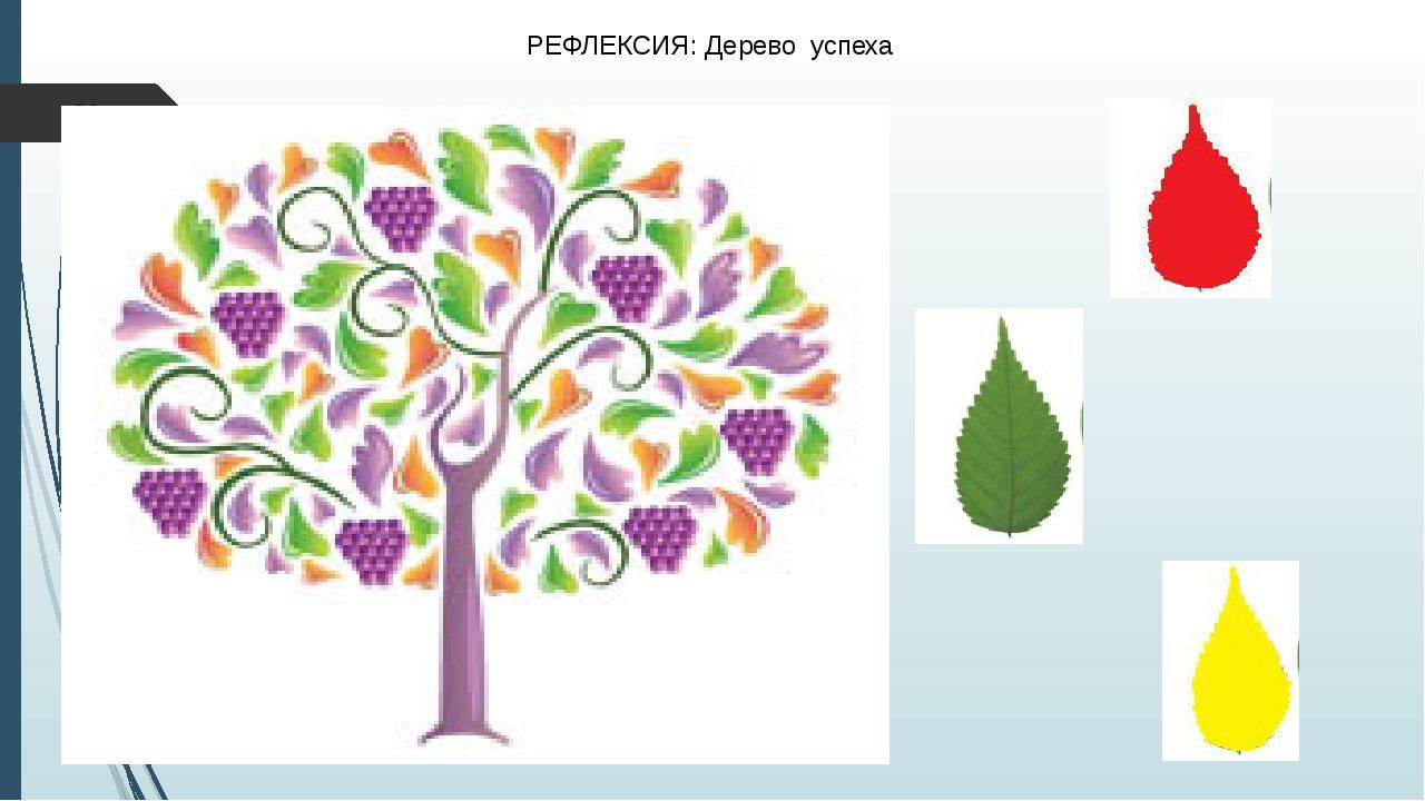 РЕФЛЕКСИЯ: Дерево успеха