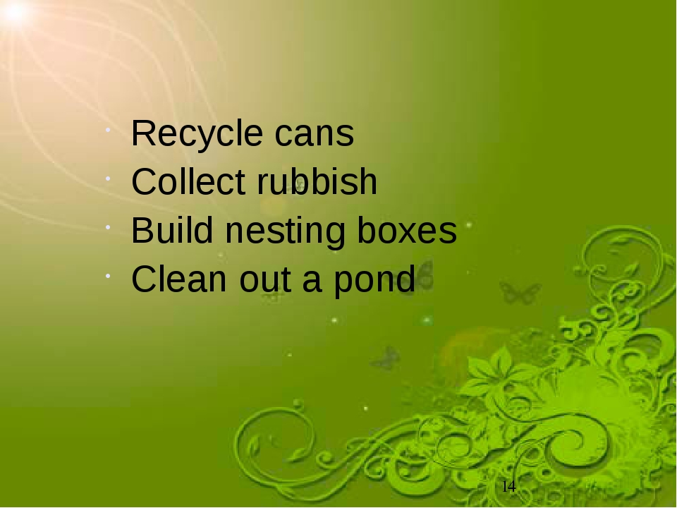 Recycle cans Collect rubbish Build nesting boxes Clean out a pond