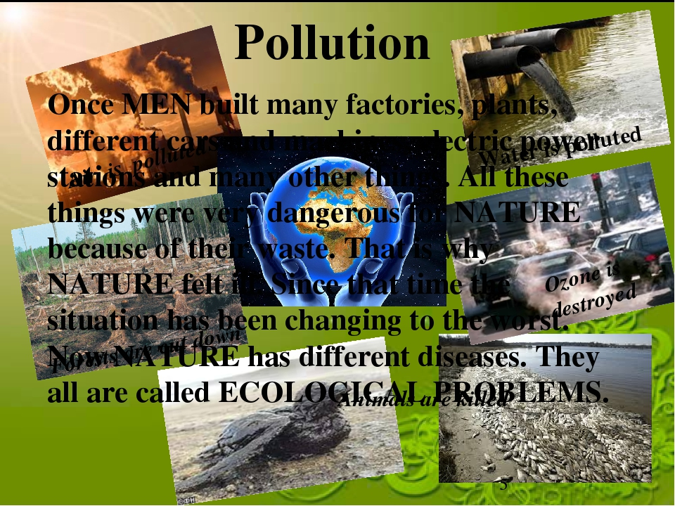 Pollution Water is polluted Air is polluted Ozone is destroyed Animals are ki...
